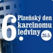 6. Plzeňský den karcinomu ledvin