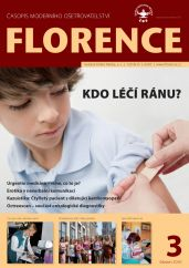 Florence 3 / 2010
