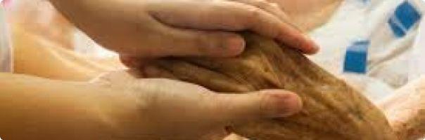XIV. ústecký den ošetřovatelství