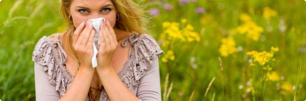 Světový den alergie a astmatu: problémy má kolem třetiny české populace, na léčbu jde ročně ke čtyřem miliardám