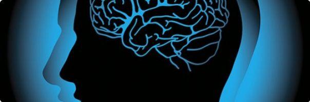 Paměť je scenáristou naší osobní navigace aneb změny paměti v průběhu dospělosti