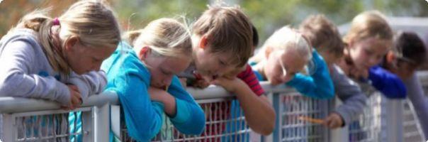 Dětské domovy nemají jednotný plán pro případ rozšíření nákazy