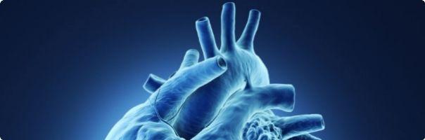 Kardiaci jsou desetkrát náchylnější kzápalu plic